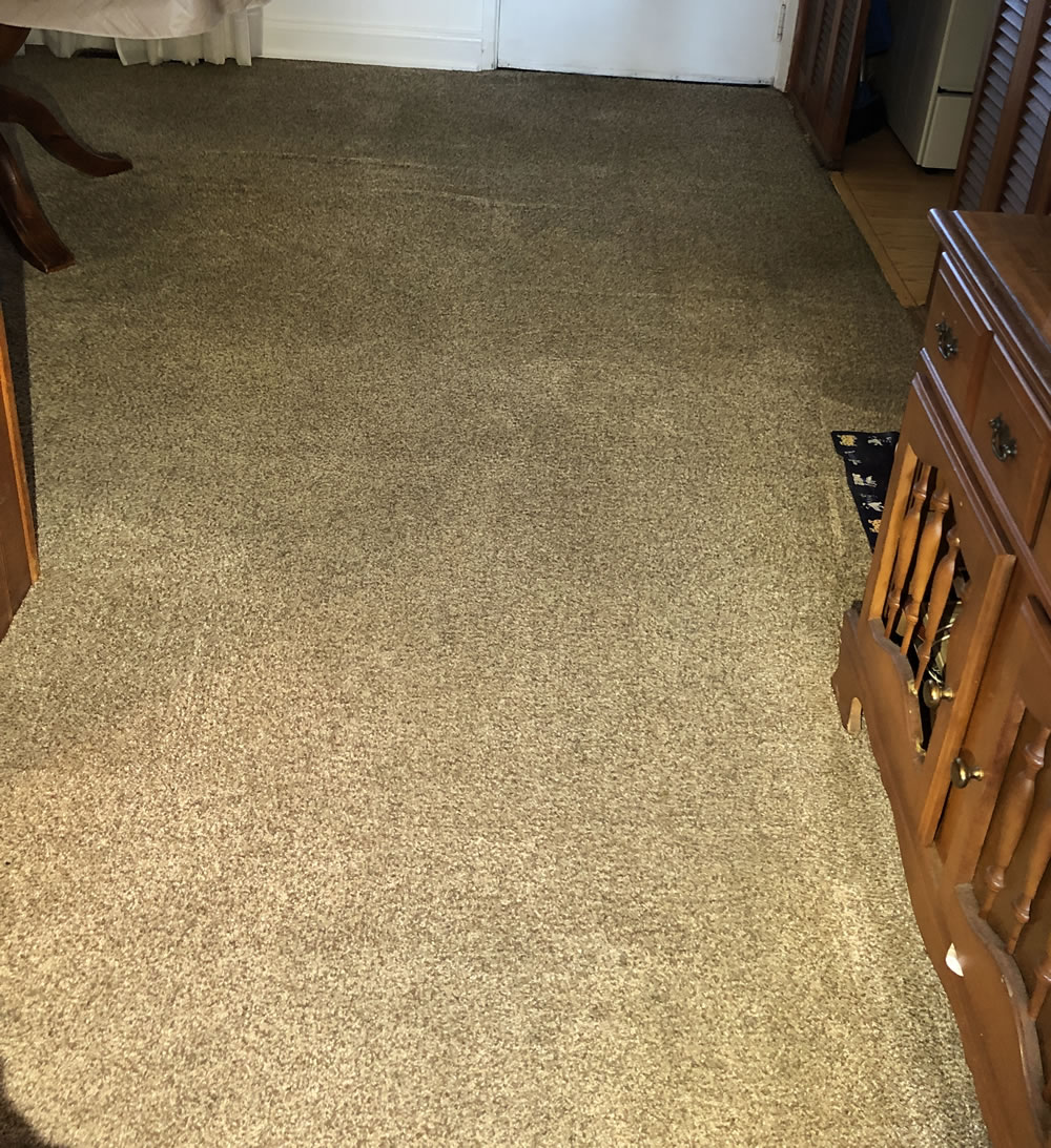Stain After Cleaned by Sonrise Carpet Care