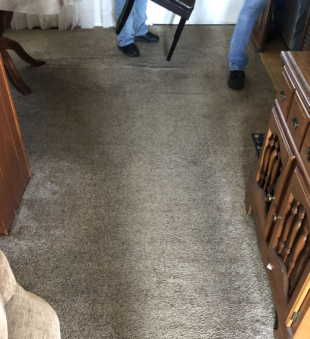 Stain Before Cleaned by Sonrise Carpet Care